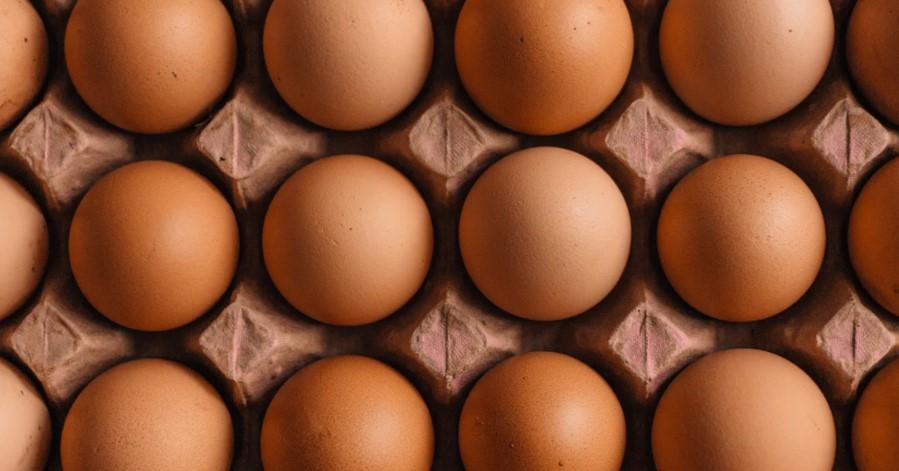 jaja proteini jaje