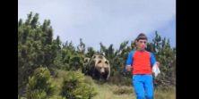 Dvanaestogodišnjak planinario i naletio na medvjeda - reakcija mu je čudesna