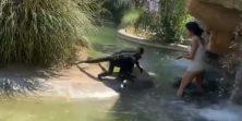 Žena provalila u nastambu majmuna u zoološkom vrtu, sjedila u bazenu i hranila ih flipsom