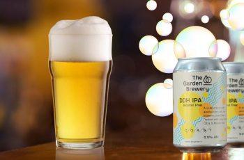 Prvo bezalkoholno craft IPA pivo u regiji - ništa alkohola i manje kalorija su za neke dobar recept