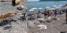 "VIDEO Okrenuli janje nasred plaže: ""Malo je vruće, al..."""